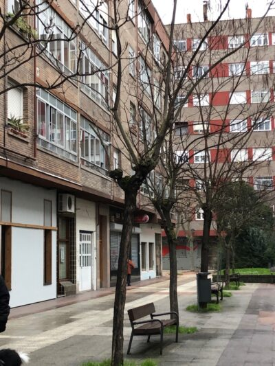 Acacias en calle Lima
